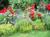 Blütereiches Staudenbeet
