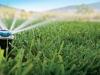 Beregnung der Rasenfläche