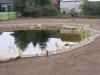 7.1.Fertige Teichanlage.JPG